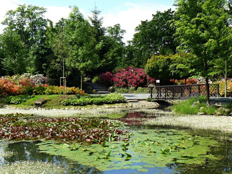 Městská park Svitavy